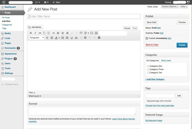 WordPress Editing Interface